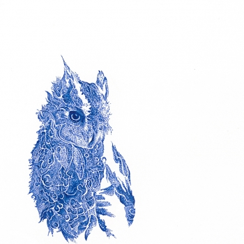 Owl in Blue |Archival Ink on Paper | 8 x 10"